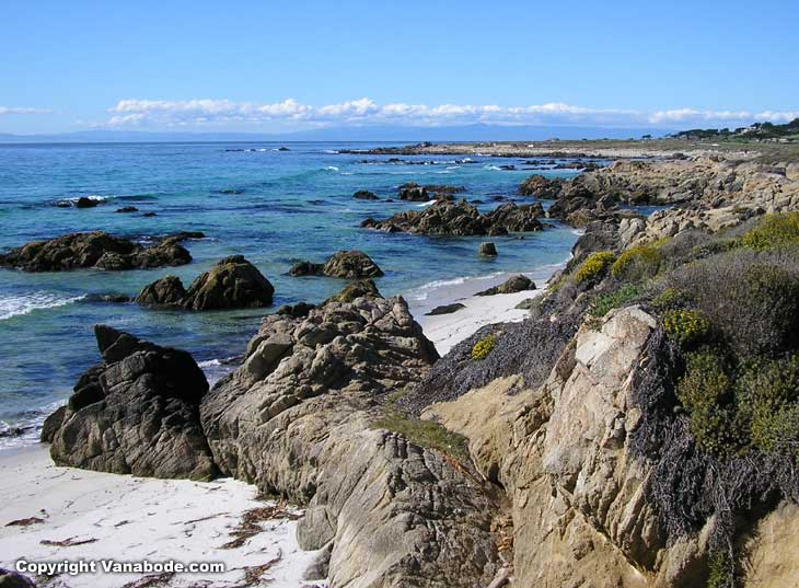 picture shows some of the coast line along the 17 mile private pay to get in section of California near  Carmel by the Sea.