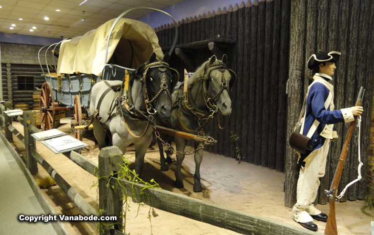 army horse and buggy wagon