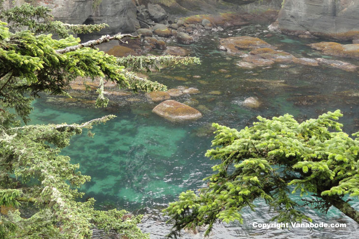 picture of the clear blue waters of cape flattery
