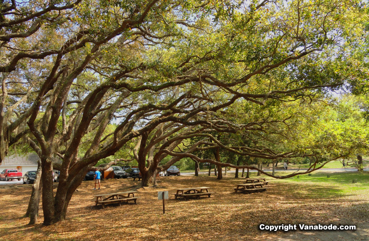 Fort Matanzas National Monument grounds and picnic area