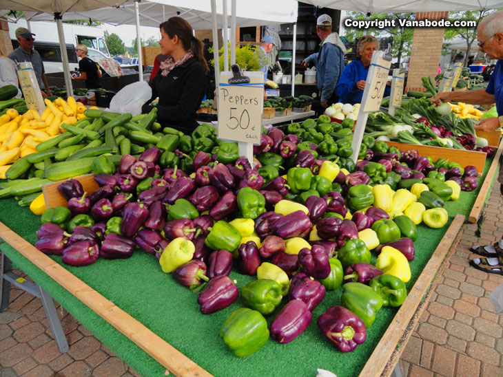 holland farmers market peppers in michigan