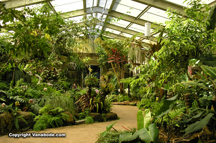 california arboretum tropical greenhouse picture