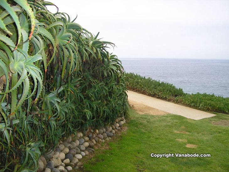 la jolla beach park picture