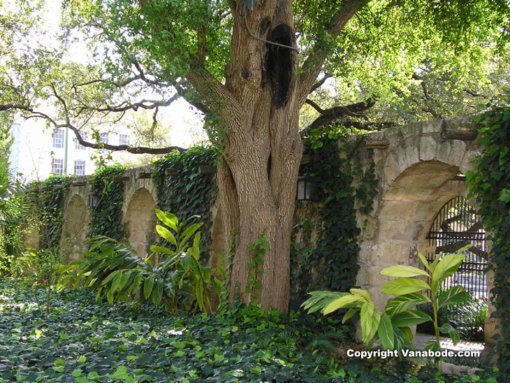 Picture taken from the garden at The Alamo in San Antonio Texas
