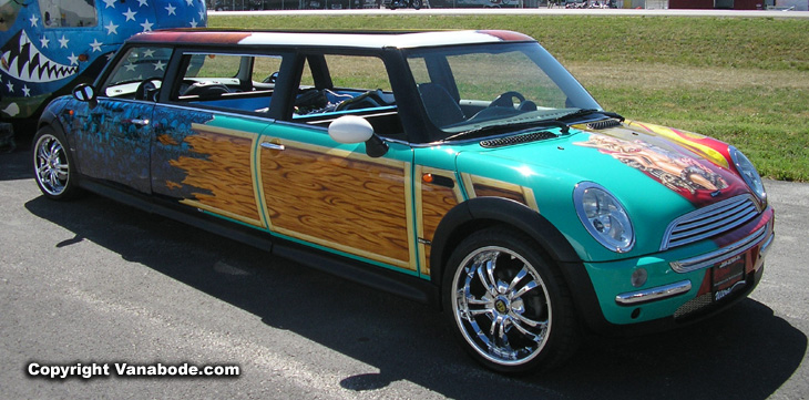 Picture of Sturgis extended mini cooper