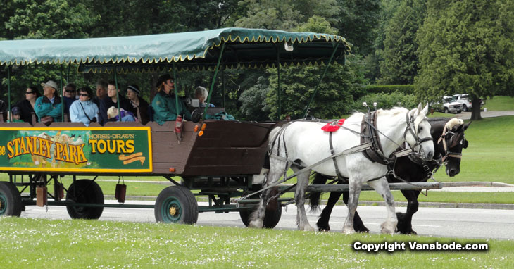 picture of carriage tour through stanley park in canada