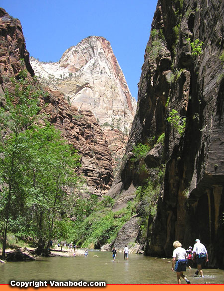 zion narrows picture