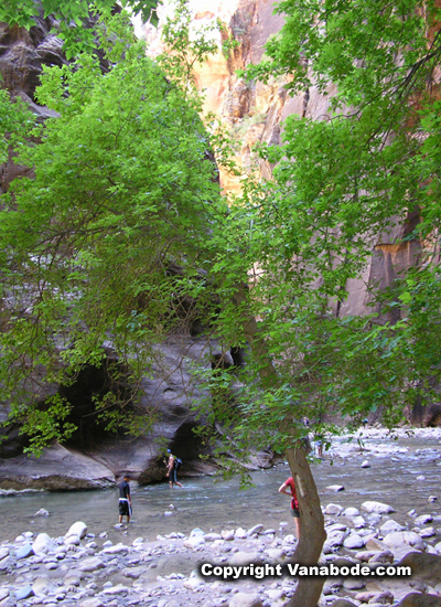 virgin river narrows picture